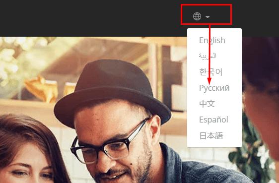 Payoneer кошелек выбор языка при регистрации