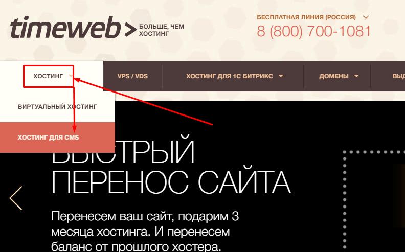 Создание и продвижение сайтов для чайников хостинг тайм веб